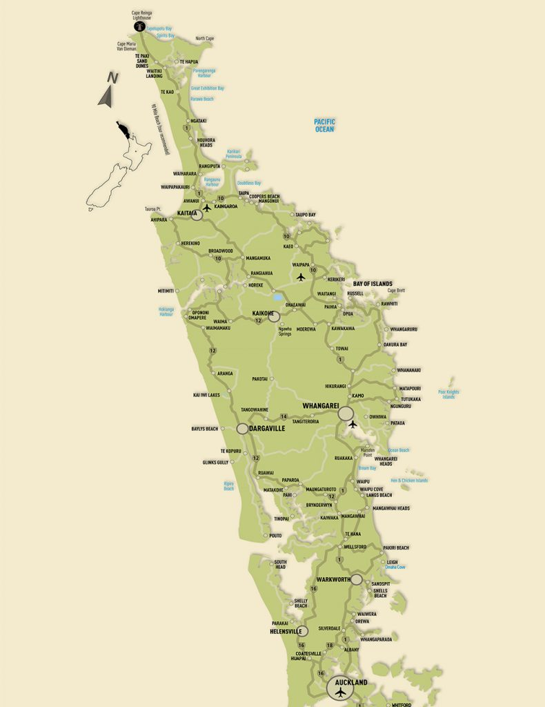 Oliveti - The Olive Oil Tasting Trail - Olive growers association of Northland, New Zealand